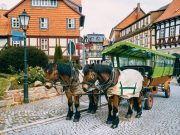 Pferdekremser Wernigerode
