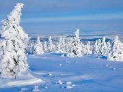 schneebedeckter Harz