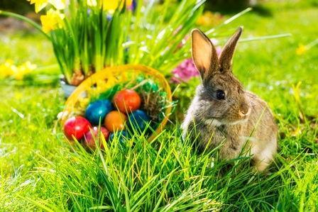 Osterfeiertage im Regiohotel Harz