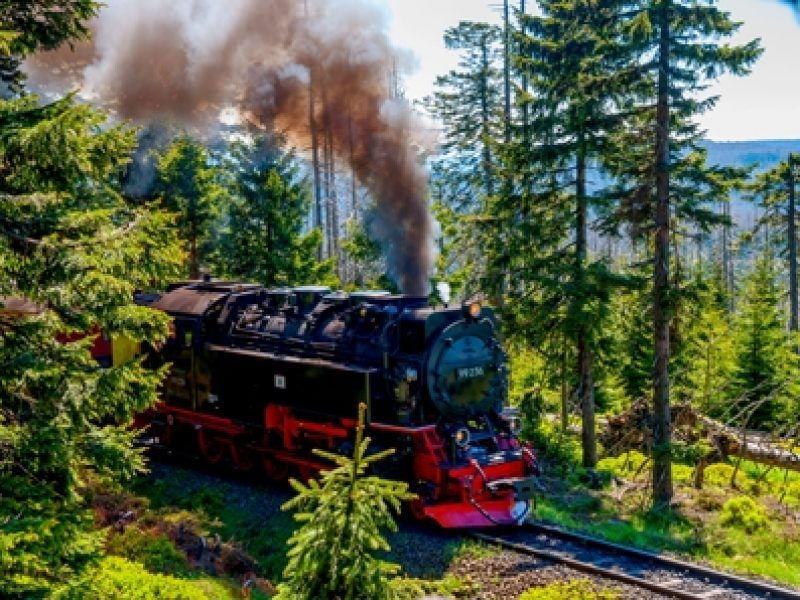 Mit der Schmalspurbahn zum Brocken