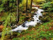 Wildromantisches Bodetal Harz