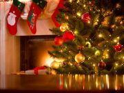 Weihnachtsbaum und Kamin