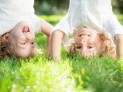 Kinder auf Wiese Harz